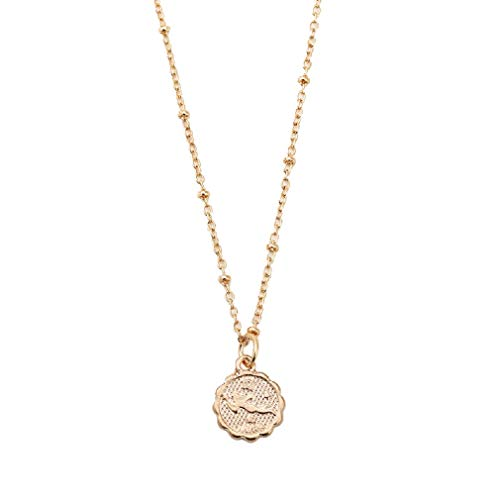 AEVIO Constellation Necklace Zodiac Horoscope Medallion Pendant Jewelry for Women and Girls, Trend All-Match for Girls and -