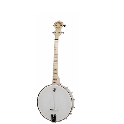 Deering Goodtime 4-String Tenor Banjo Review