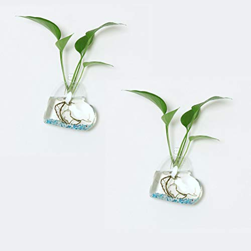 Mikilon Pack of 2 Glass Planters Wall Hanging Planters Heart Shape Glass Plant Pots Hanging Air Plant Pots Flower Vase Air Plant Terrariums Wall Hanging Plant Container, 4.7 Inch (Heart)