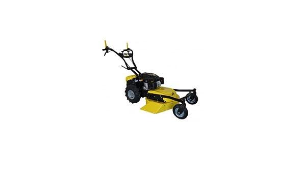 Recortadora Desbrozadora RL210.RL 4 ruedas: Amazon.es: Bricolaje y ...