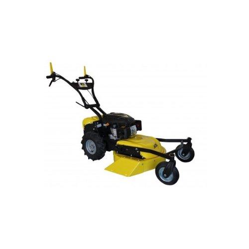 Recortadora Desbrozadora RL210.B 4 ruedas: Amazon.es ...