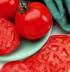 manalucie tomato - 9