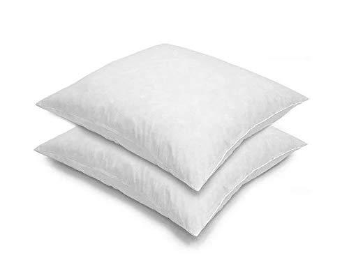 Blue Ridge Home Fashion 26x26 Feather Euro (2 Pack),Hypoallergenic European Sleep Pillow Inserts Sham Square Form, White