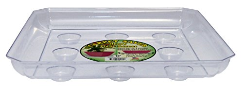 CWP SQDS-1000 Heavy Gauge Footed Square Carpet Saver Saucer, 10-Inch by 10-Inch, Clear - Square Plant Containers