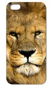 Fashion The Lion Pattern Protective Hard Case Cover For iPhone 5 5S #098