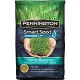 Pennington Smart Seed Fescue/Bluegrass Mix, 3 lb