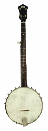 Recording King RK-OT25-BR Madison Open Back Banjo, Scooped Fretboard by Recording King