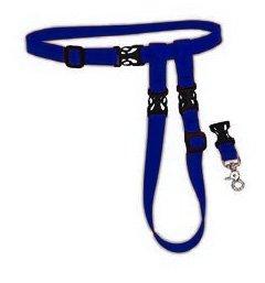 The Buddy System – Hands Free Leash – Regular Dog System – Blue Regular, My Pet Supplies