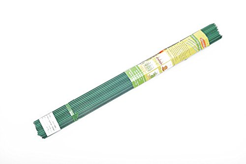 Amazon.com : EcoStake, 1/4u0027u0027 X 60u0027u0027, Pack Of 20, Garden Stakes, Plant Stakes,  Tomato Stakes, Never Rust/rot, Better Than Wood Stakes And Bamboo Stakes,  ...