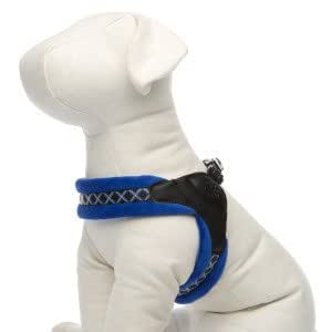 Amazon.com : Top Paw Easy Fit Dog Harness MEDIUM : Pet
