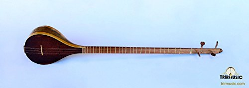 High Quality Persian Setar Citar Sehtar Sitar With Soft Case ANS-123 by trirmusic