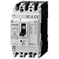 MITSUBISHI ELECTRIC NV63-CV 2P 60A 30MA Earth-Leakage Circuit Breakers (Harmonic Surge Ready)(Economy class)(2 Poles)(Frame 60A) NN