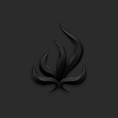 Black Flame [Explicit]