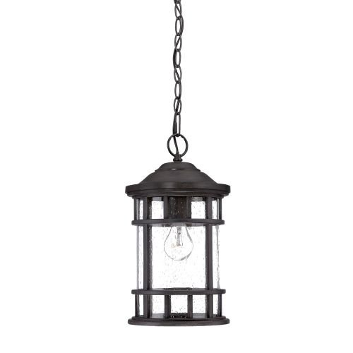 Acclaim 31946BC New Vista Collection 1-Light Outdoor Light Fixture Hanging Lantern, Black Coral by Acclaim