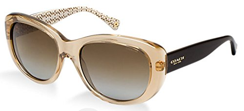 Coach HC8083 - L071 DARCY Sunglasses Color 521613 by Coach