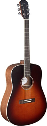- James Neligan EZR-D EZRA Series Dreadnought Acoustic Guitar