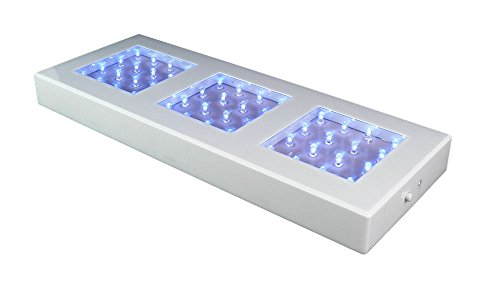 Fortune Products Led Lights in US - 7