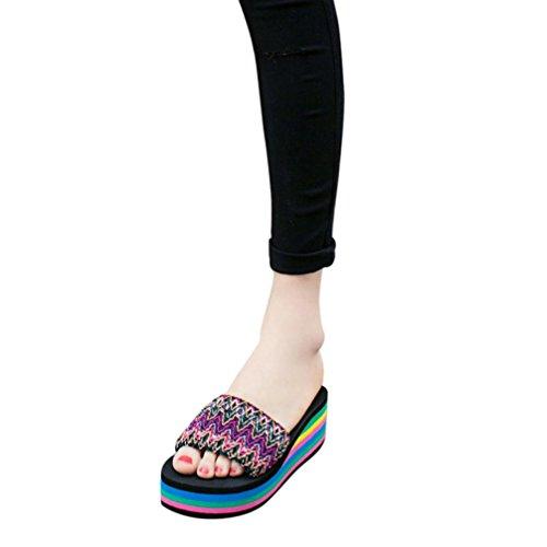 Hatop Slipper For Women, Women National Style Summer Sandals Indoor Outdoor Flip-Flops Beach Shoes D
