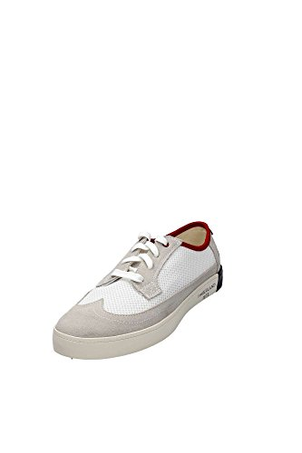 Bianco basses homme A16GW baskets TIMBERLAND wx70R7
