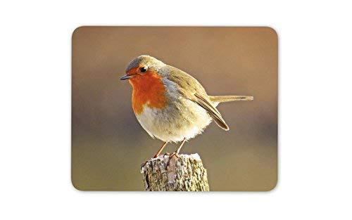 Cute Robin Redbreast Bird Mouse Mat Pad - British UK Birds Gift Computer #8701
