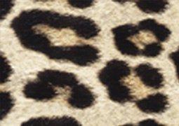 Platypus PT-Leopard Fortis Design Real Designer Duct Tape, 32' Length x 2