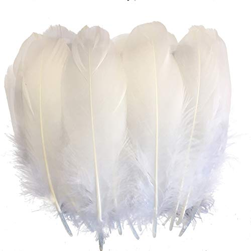 Sowder Natural Goose Feathers Clothing Accessories Pack of 100 (White)