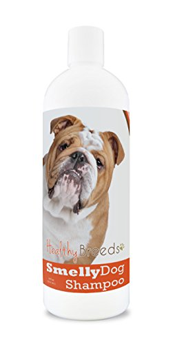 Healthy Breeds Smelly Dog Deodorizing Shampoo & Conditioner with Baking Soda for Bulldog - Over 200 Breeds - 8 oz - Hypoallergenic for Sensitive Skin from Healthy Breeds