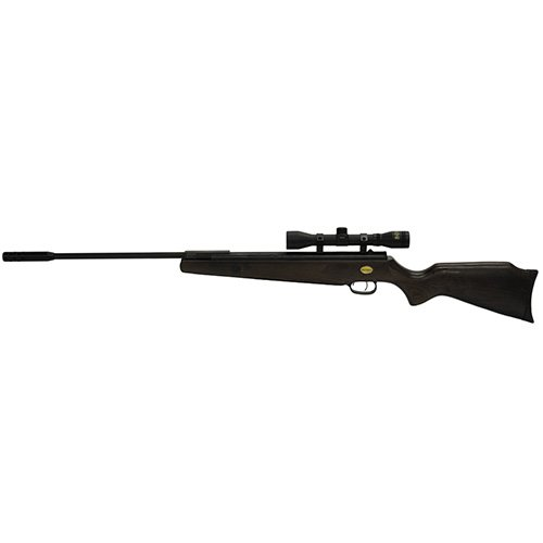 - Beeman Sportsman Ram Deluxe 10644 Air Rifle Combo with 4x32x 40mm