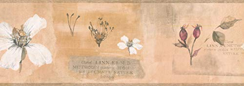 Wallpaper Border Flower Beige Classic 15' x 4.5