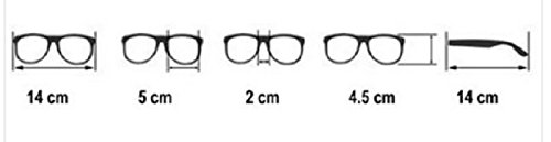 4sold 1 Cebra de lectores Unisex 5 de Estilo Reader nbsp;fuerza gafas carey nbsp;marrón UV400 hombre sol sol lectura Mujer de para gafas 4sold marca UV rrzqSFw