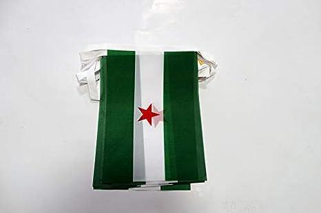 AZ FLAG Guirnalda 6 Metros 20 Banderas de Andalucia ARBONAIDA 21x15cm - Bandera INDEPENDENTISTA ANDALUZA - NACIONALISMO Andaluz 15 x 21 cm - BANDERINES: Amazon.es: Jardín