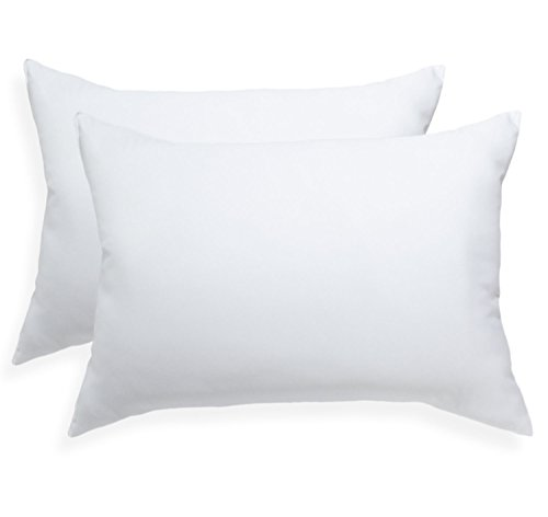 Pegasus Home Fashions EZ Dreams Microfiber Pillow, Standard, 2-Pack