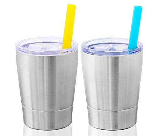 Colorful PoPo Kids Stainless Steel Cup Lovely Small Rambler Tumbler Sippy Cup with Lid and Silicone Straw, 8.5 OZ Silver, Set of 2