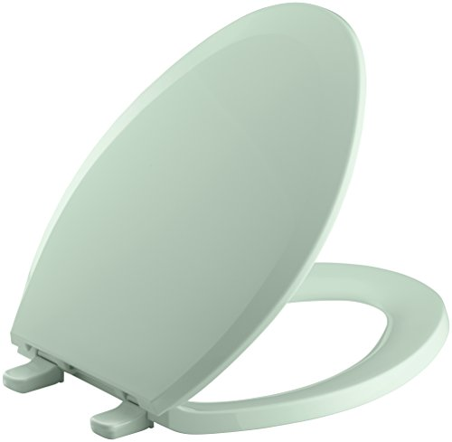 Kohler K-4652 Lustra Q2 Elongated Closed-Front Toilet Seat with Quick-Release an, Seafoam Green