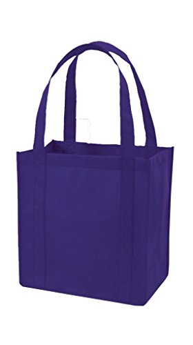 Reusable Grocery Shopping Bags with Plastic Bottom Insert Heavy Duty Non