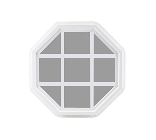 Octagon 18