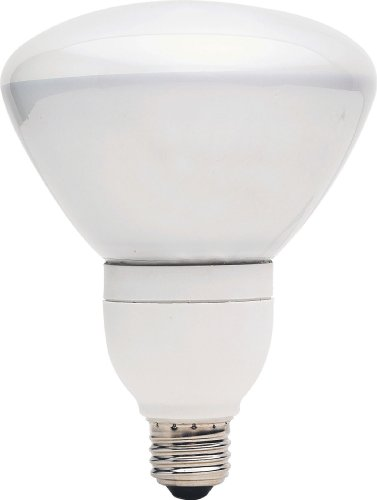 GE Lighting 66666 1300 Lumen Floodlight