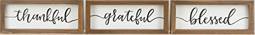 (Glory Haus Thankful Grateful Blessed Framed Boards)