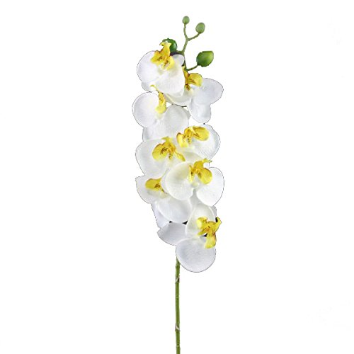 Phalaenopsis Spray (Shinoda Design Center 0031301562 2 Piece Faux Phalaenopsis Orchid Spray with 8 Flower Set, 28