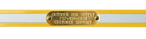 (Outdoor Dog Supply 1