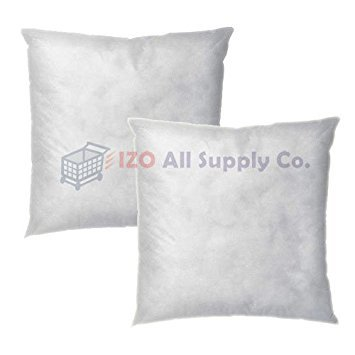 IZO Home Goods Square Sham Stuffer Pillow - 18 x 18 (white, 2) Hypo-allergenic Made in USA