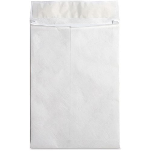 End Plain White Envelopes Expansion (Business Source 42201 Tyvek Envelopes,Open-End,Plain,10