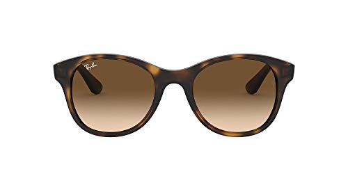 Ray-Ban Sonnenbrille (RB 4203)