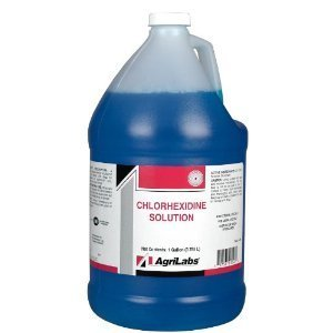 Chlorhexidine Solution 2% Gallon