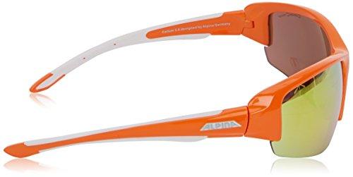 Alpina Callum 2.0 Lunettes de sport Orange