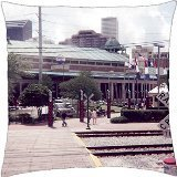Gankering Canal St. in New Orleans - Throw Pillow Cover Case ()