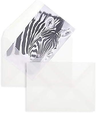 100 Stück, Transparente Briefumschläge, DIN C6, Nassklebung, Spitze Klappe, 90 g/qm Offset, Ohne Fenster, Weiß (Transparent-Weiß), Blanke Briefhüllen