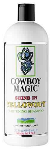 Cowboy Magic Shine in