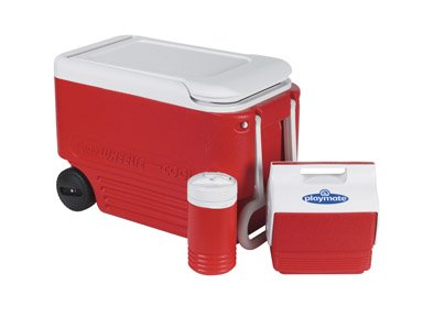 igloo cooler personal size - 9