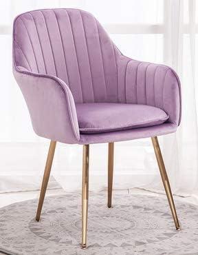 Luxe Design Fauteuil.Chaise De Salle A Manger Moderne De Luxe Chaise De Velours